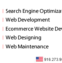 SEO Web Developer